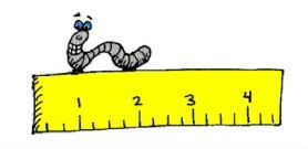 Primary Four - Measuring Length