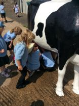Primary One At Clementsmount Fun Farm
