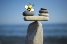 Balancing In Busy Bees