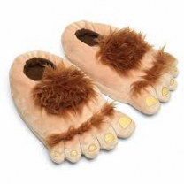 Slip Into Your Slippers Day - Primary 5